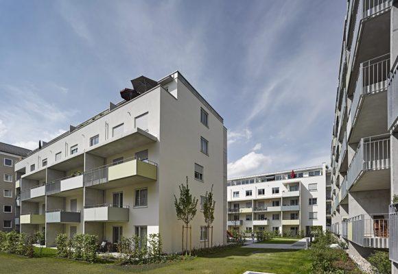 eap Architekten und Stadtplaner, Innerstädtisches Wohnen, Agricolastraße, München, Garten